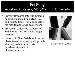 Fei Peng Assistant Professor, MSE, Clemson University