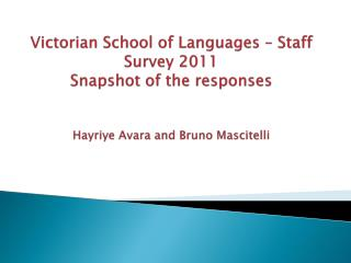 VSL Staff survey - 2011
