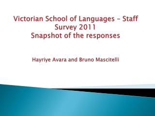 VSL Staff survey - 2011