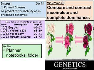 Planner Oct  23 T:  Punnett  Squares  D :  predict the probability of an offspring's genotype
