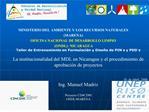 La institucionalidad del MDL en Nicaragua y el procedimiento de ...