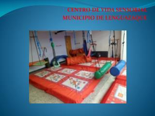 CENTRO DE VIDA SENSORIAL MUNICIPIO DE LENGUAZAQUE