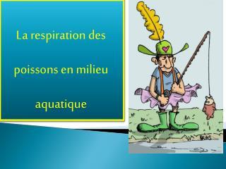 La respiration des  poissons en milieu  aquatique