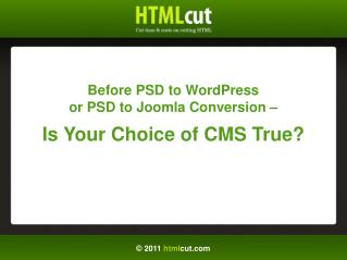 Before PSD to WordPress Conversion - Is You