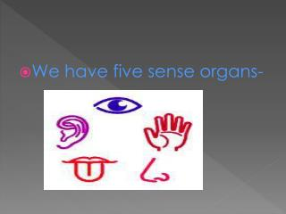 We have five sense organs-