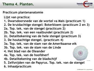 Thema 4. Planten.