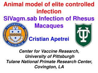 Animal model of elite controlled infection SIVagm.sab Infection of Rhesus Macaques
