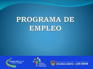 PROGRAMA DE EMPLEO