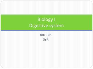 Biology I Digestive system