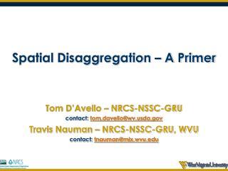 Spatial Disaggregation � A Primer