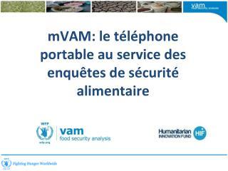 mVAM :  le téléphone portable au service  des  enquêtes de sécurité alimentaire