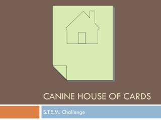 Canine House of Cards