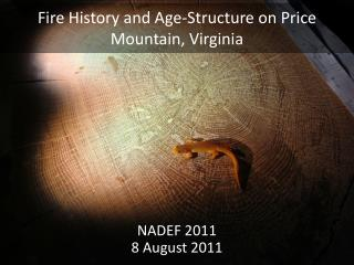 Fire History and Age-Structure on Price Mountain, Virginia