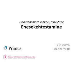 Grupivanemate koolitus, 9.02.2012 Enesekehtestamine