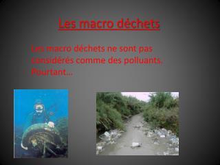 Les macro déchets