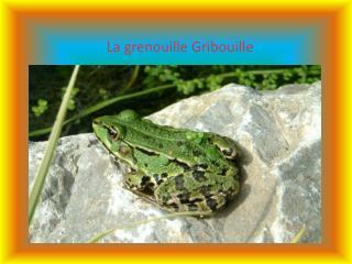 La grenouille Gribouille
