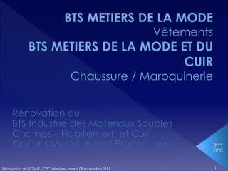 BTS METIERS DE LA MODE Vêtements BTS METIERS DE LA MODE ET DU CUIR Chaussure / Maroquinerie