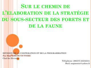 Sur le chemin de l' elaboration  de la  stratégie du  sous-secteur  des forets et de la  faune