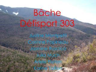 Bâche D éfisport  303