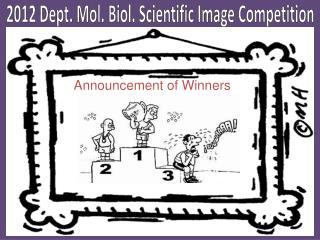 2012 Dept . Mol. Biol. Scientific Image Competition