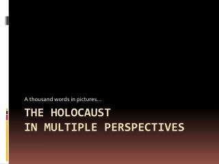 The holocaust in multiple perspectives