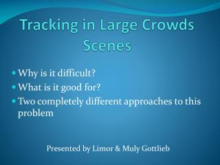 Tracking in Large Crowds Scenes
