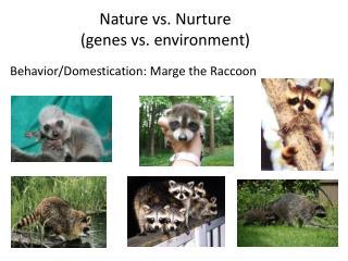 Nature vs. Nurture  (genes vs. environment)