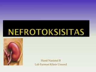 Nefrotoksisitas