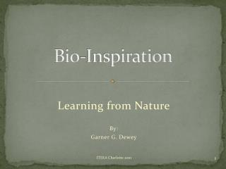 Bio-Inspiration