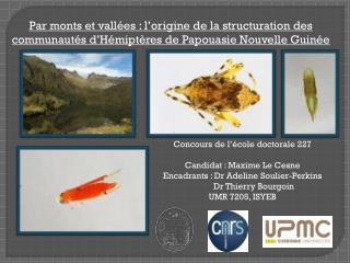 Concours de l'école doctorale 227 Candidat : Maxime  Le  Cesne