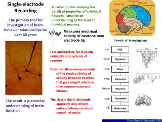 Measures electrical activity of neurons near electrode tip