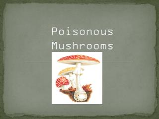 Poisonous Mushrooms