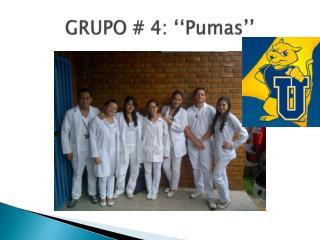 GRUPO  #  4: ''Pumas''