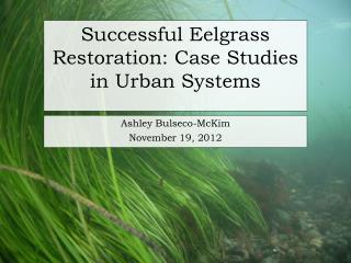 Successful Eelgrass Restoration: Case Studies in Urban Systems