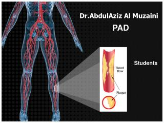 Dr.AbdulAziz  Al  Muzaini
