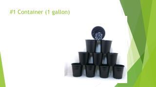 #1 Container (1 gallon)