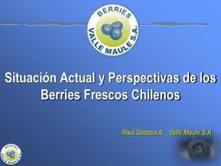 Situación Actual y Perspectivas de los  Berries  Frescos Chilenos