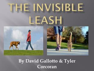 The Invisible Leash