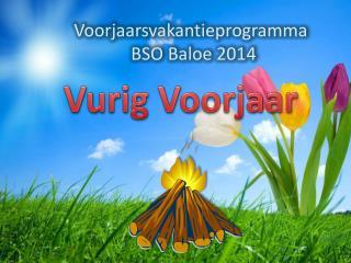 Voorjaarsvakantieprogramma             BSO  Baloe  2014
