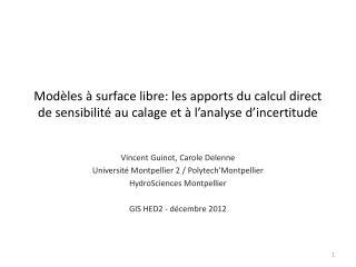 Vincent  Guinot , Carole  Delenne Université Montpellier 2 /  Polytech'Montpellier