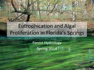 Eutrophication and  Algal Proliferation in Florida's  Springs