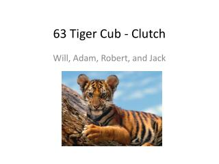 63 Tiger Cub - Clutch