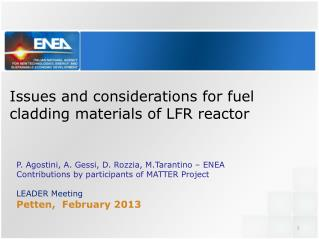 Issues and  considerations  for fuel  cladding materials of LFR  reactor
