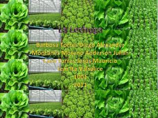 Barbosa Torres Diego Alexander Montañés Moreno Anderson Julián Caro Torres Jesús Mauricio