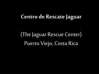 Centro de  Rescate  Jaguar (The Jaguar Rescue Center) Puerto Viejo, Costa Rica