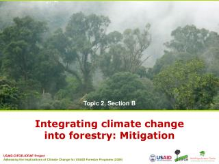 Integrating climate change  into forestry: Mitigation