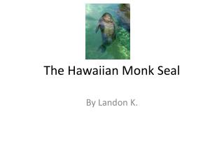 The Hawaiian Monk Seal