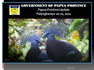 GOVERNMENT OF PAPUA PROVINCE Papua Province Update  Palangkaraya  20-22, 2011