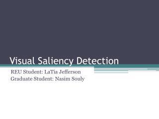 Visual Saliency Detection