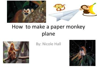 How  to make a paper monkey plane